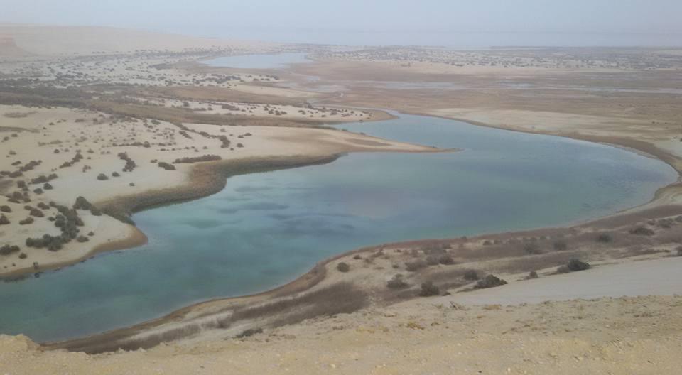 Magic lake in Fayoum oasis