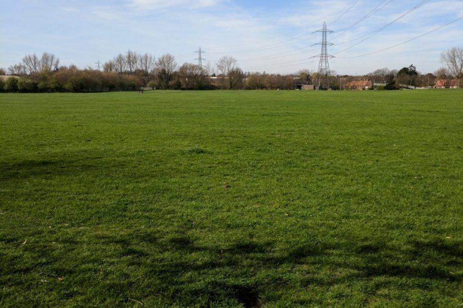 Flat grassland at Rose Hill Park West