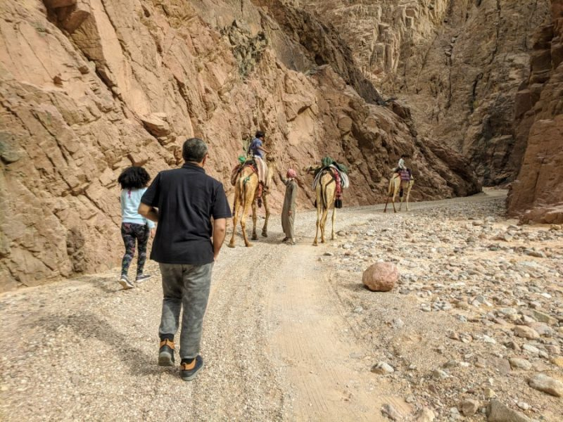 Desert adventure in Nuweiba Egypt